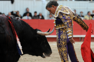 ruizmiguel-torero